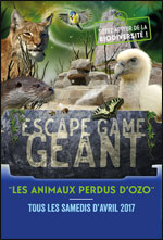 ESCAPE GAME GEANT